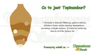 czym jest topianmbur i jakie ma właściwości?