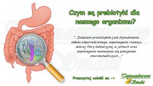 Czym są prebiotyki dla naszego organizmu?